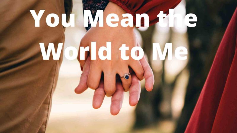 50 Best 'You Mean The World To Me' Quotes & Sayings